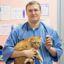 Клиническая эффективность препарата PALLADIUM GOLDEN DEFENCE в лечении отодектоза домашних кошек